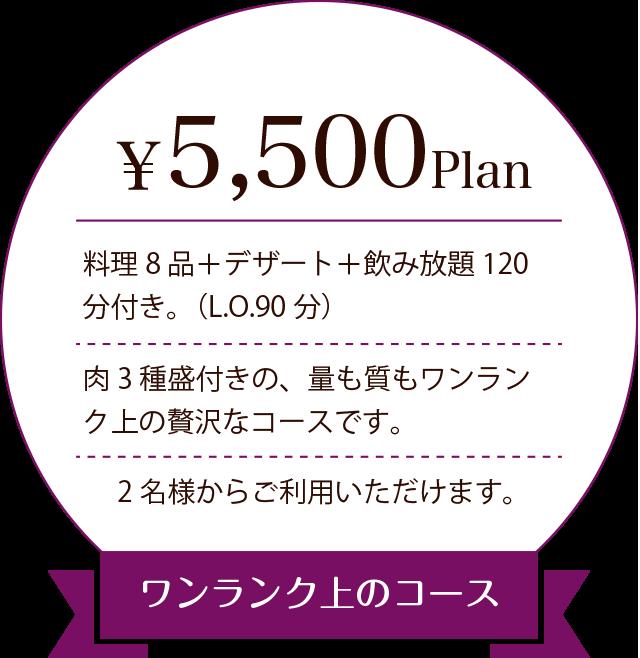 5000プラン